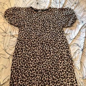 NWOT Velvet by Graham & Spencer leopard dress - M